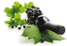 bottle with red wine and grapes